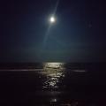 Море ночью)