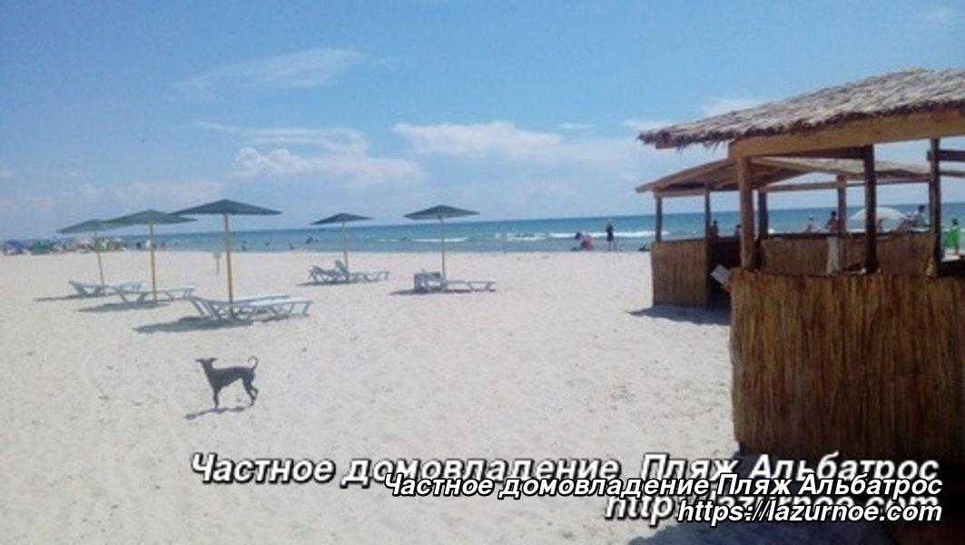 Частное домовладение Пляж Альбатрос
